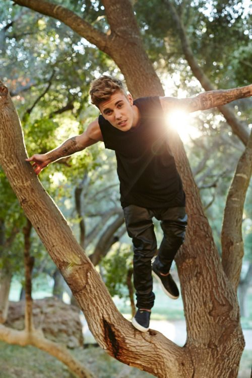 Team Bieber: Just hangin' in a tree