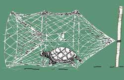 Netcraft Turtle Trap