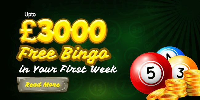 The game of bingo may be a popular form of net entertainment that's enjoyed by peoples everywhere the world. The easy to play lotto family game is enjoyed by people from all walks of life and financial gain categories.