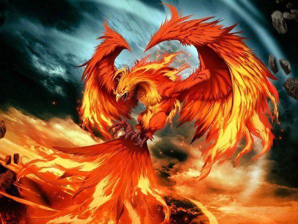 Le Phénix mythes et légendes créatures imaginaires féerie