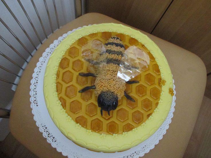 dort včela