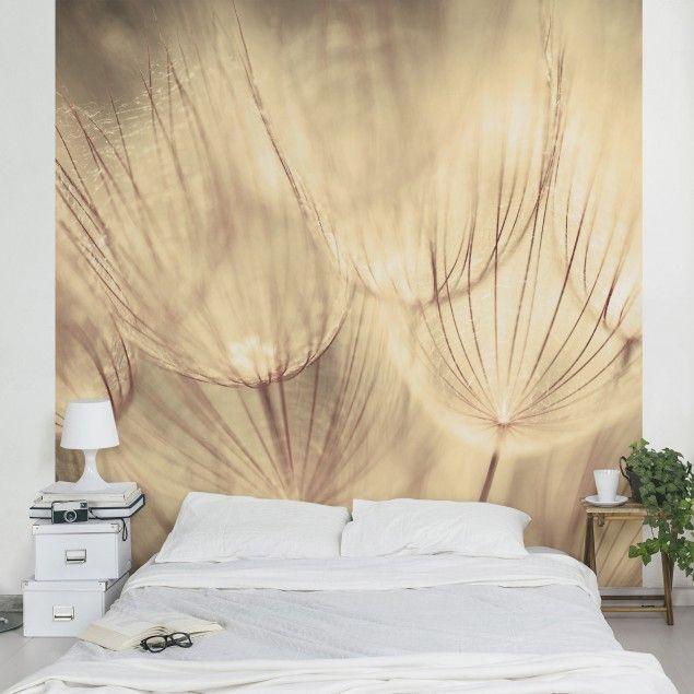 Die besten 25+ Fototapete pusteblume Ideen auf Pinterest Bild - vliestapete wohnzimmer ideen