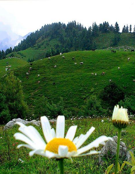 natural beauty of pakistan essay