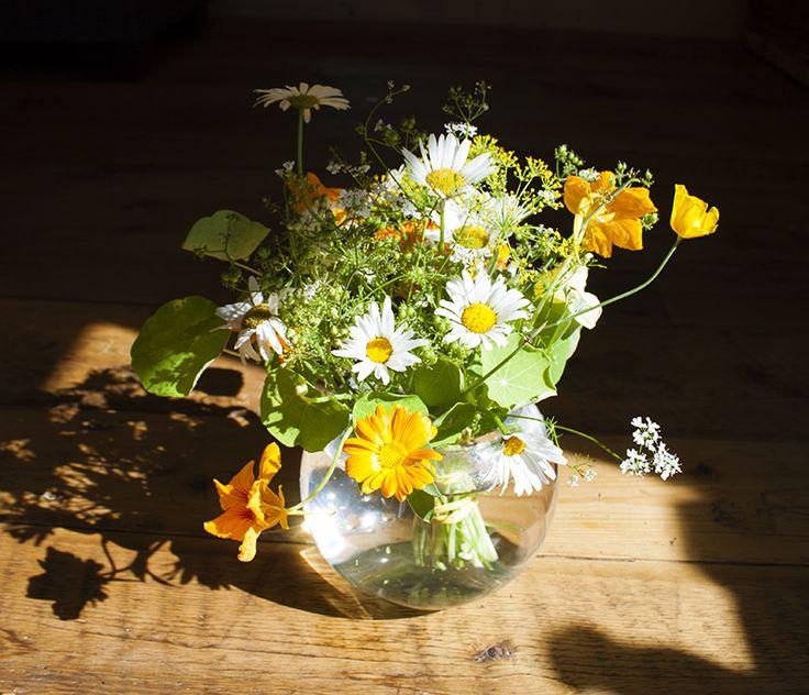 Bouquet du jardin été 2016. Photo: Émilie Lapierre Pintal.