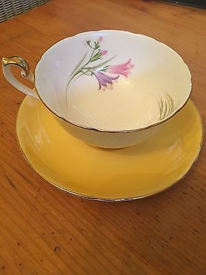 Shelley Yellow Floral Wildflowers Bone China Teacup Tea Cup & Saucer