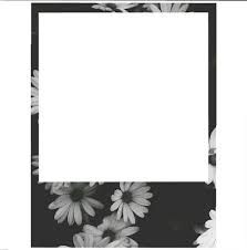 Image result for polaroid frame tumblr