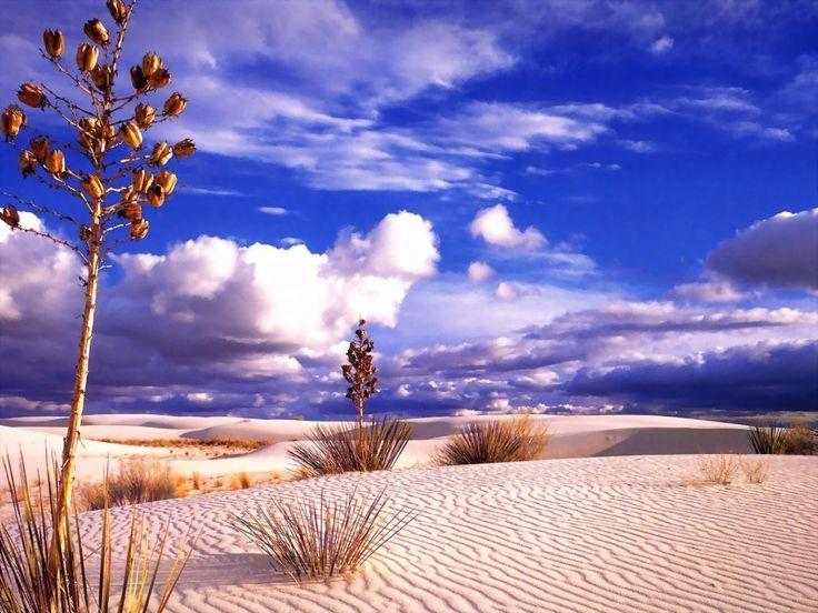 landscape Nature Desert Sand Dune Wallpapers HD Desktop and
