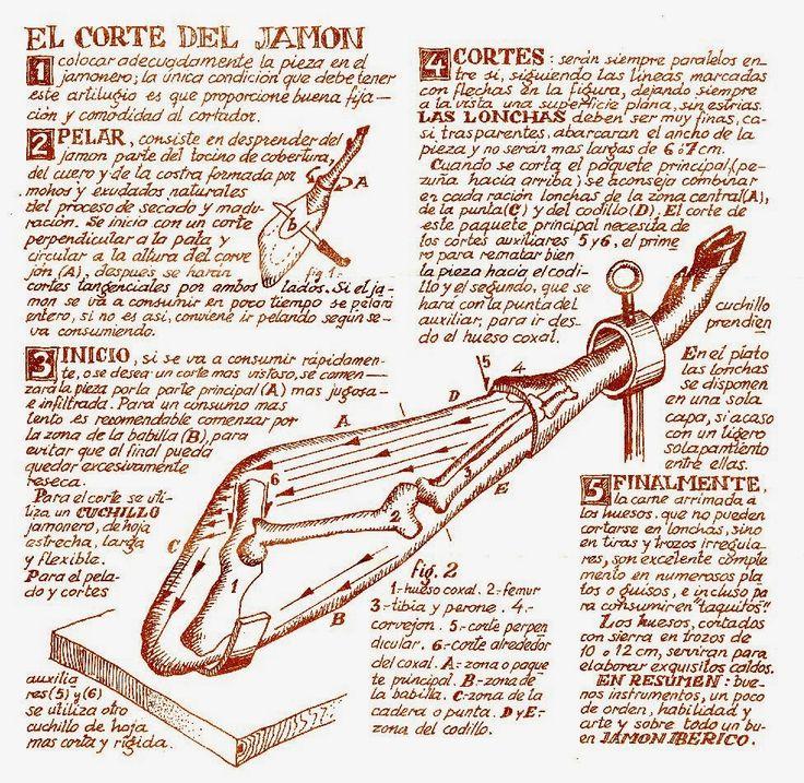 La iguana ilustrada: Infografía 'pata negra'