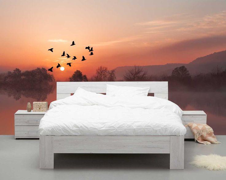 Vlies fotobehang Vliegende vogels met zonsondergang   Muurmode.nl