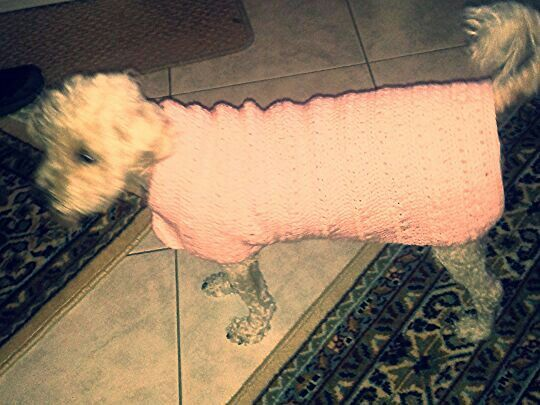 Mily's new pink sweater