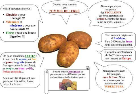 Pomme-de-terre1200