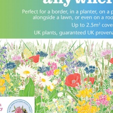 Meadow Anywhere Wildflower and Grass Seed Mix