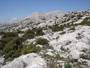 Il #trekking in #Sardegna è fatto di sentieri che attraversano una natura incontaminata e #grotte ancora inesplorate, foreste secolari e capanne che come forma richiamano gli antichi nuraghi.   Tutto questo è racchiuso in un luogo unico al mondo: il #Supramonte.