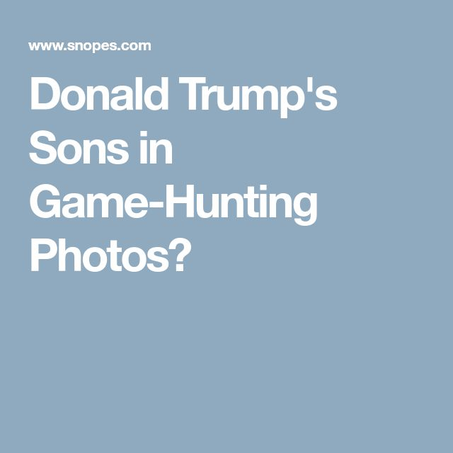 Donald Trump's Sons in Game-Hunting Photos?