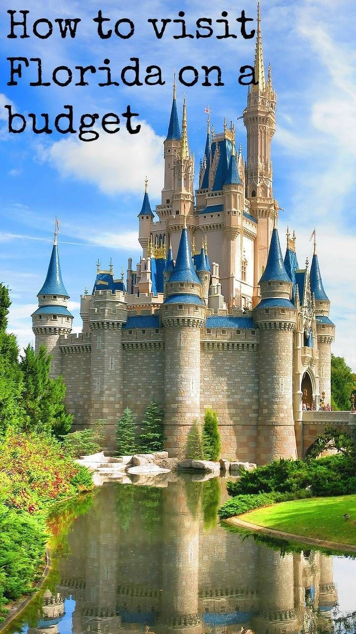 Travelling to Florida on a budget? Here's how to save some money on your Disney holiday on a budget