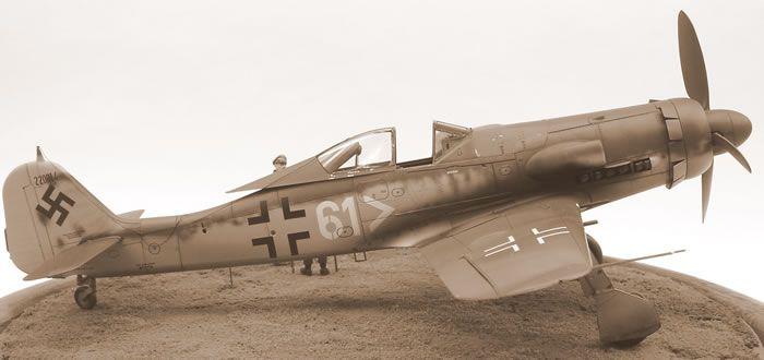 Eduard 1/48 scale Focke-Wulf Fw 190 D-11 by Eric Duval: Image