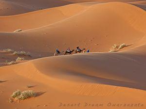 Nacht in woestijn - 135 euro/pers vertrekken Ouarzazate - zonsondergang op hoogste duin - klinkt interessant :)