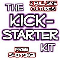The Kickstarter Kombucha Mushroom Kit by Kombucha Mamma