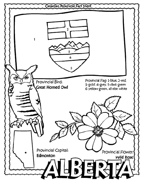 best 25  school coloring pages ideas on pinterest