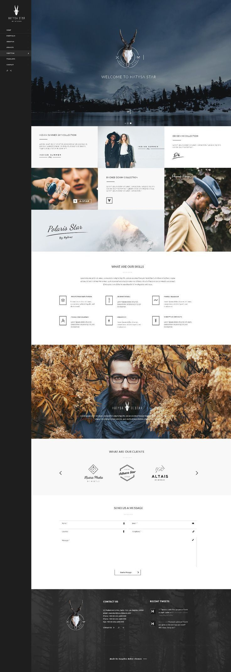 Hydrus Web Design Inspiration by naughtyrobot: