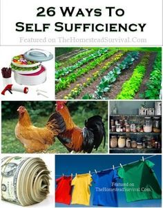26 Ways to Self Sufficiency - http://survivingthesheep.com/26-ways-to-self-sufficiency/