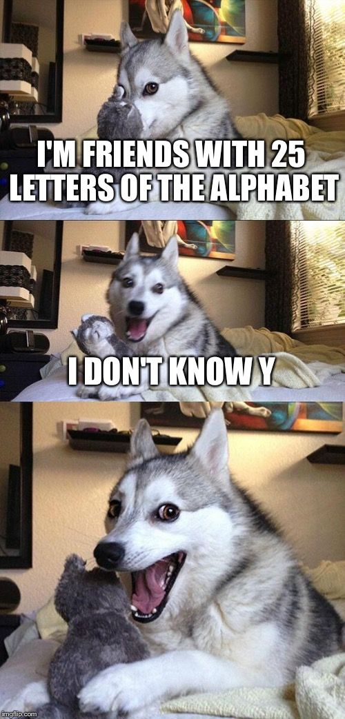 Bad Pun Dog   I'M FRIENDS WITH 25 LETTERS OF THE ALPHABET I DON'T KNOW Y   image tagged in memes,bad pun dog   made w/ Imgflip meme maker