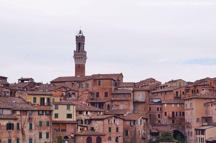 Panorami di Siena – ObiettivoFotografia.it