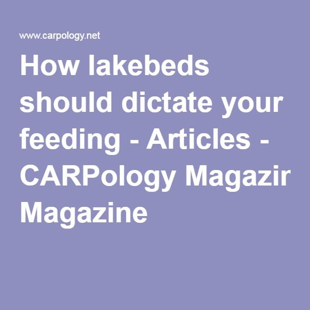 How lakebeds should dictate your feeding - Articles - CARPology Magazine