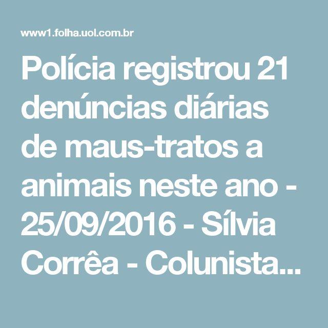 Polícia registrou 21 denúncias diárias de maus-tratos a animais neste ano - 25/09/2016 - Sílvia Corrêa - Colunistas - Folha de S.Paulo