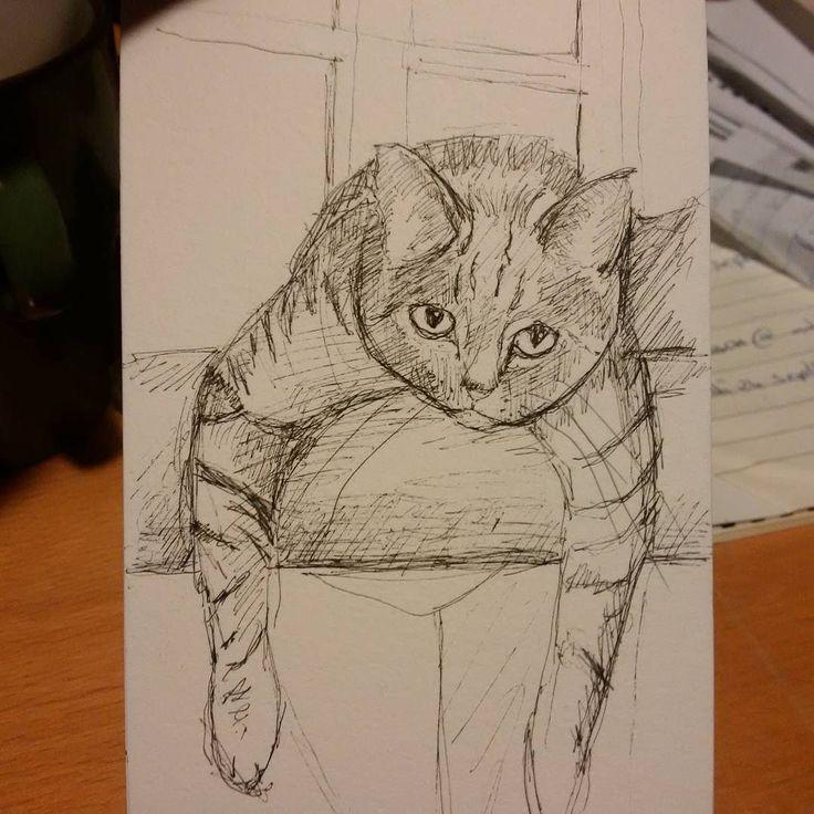 Lounging cat for @vickisarris!  #drawing #pen #catsofinstagram #catstagram #sketch #petart #petsofinstagram #petstagram #catoftheday