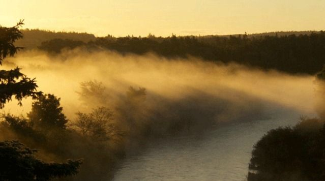 """One of Grandma's favourite summer weather sayings is """"For every fog in August, there will be a snowfall the following winter"""". Click the link to learn more. http://atlantic.ctvnews.ca/ctv-news-at-5/weather-blog/fog-forecasts-frequency-of-winter-snow-1.1437944"""