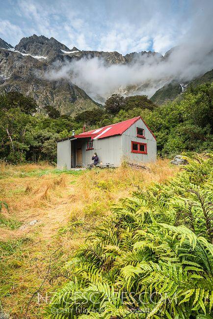 Copland Valley under Southern Alps, Westland National Park, West Coast, New Zealand | Petr Hlavacek Photo