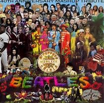 Image result for sergeant pepper album