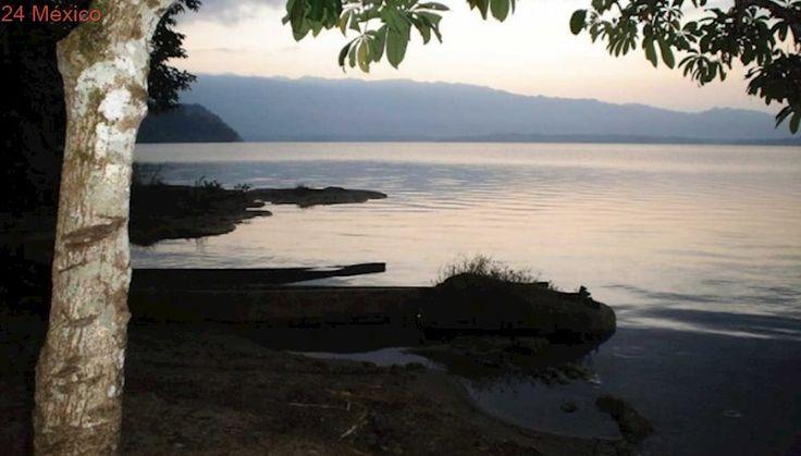 Pemex dona 25 mdp para conservar Selva Lacandona