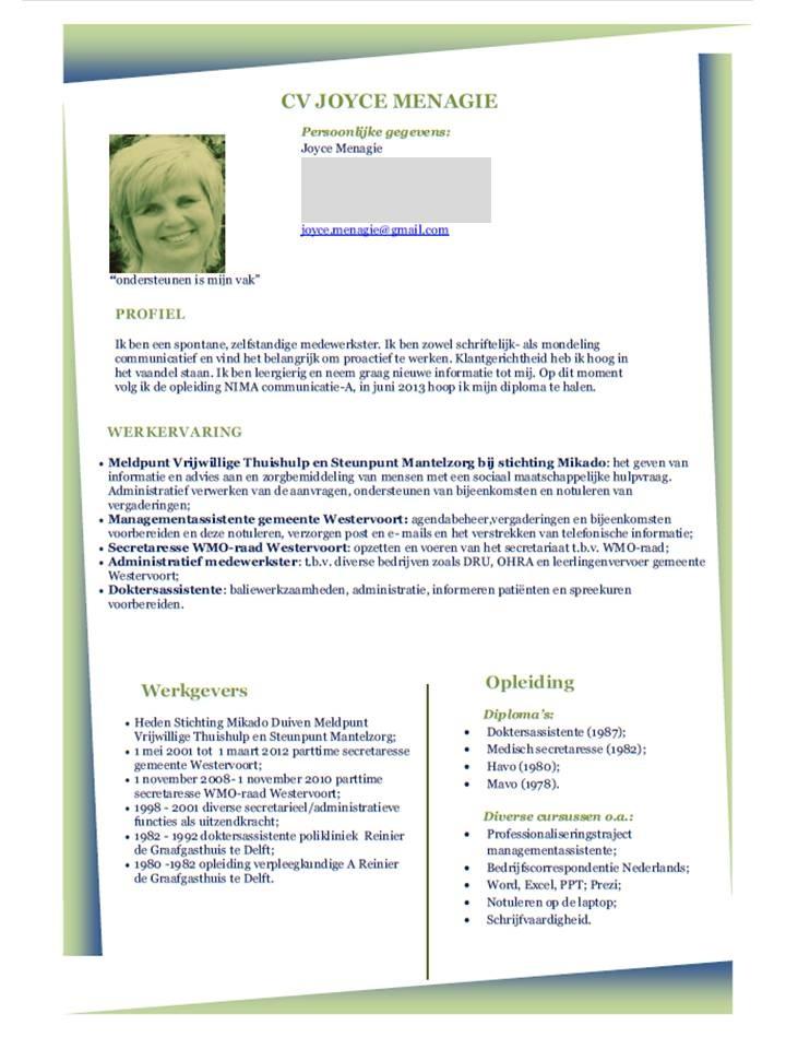 Een mooi vormgegeven CV. Ontwerp cv, Creatieve cv