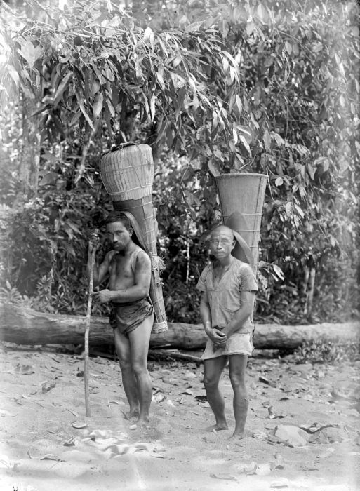 Plantation workers in Halmahera carrying the funnel-shaped baskets favored by Alfur people to collect forest products.