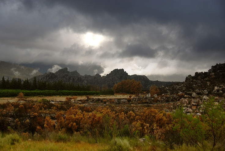 Beaverlac near Porterville and Piketberg in the Western Cape of South Africa