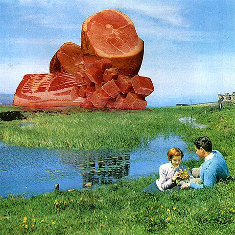 lovely meats: Meat Art, Growing Food, Kebabs, Mounting, Meatscap, Art Collage, Nicolas Lampert, Latest Posts, Romance