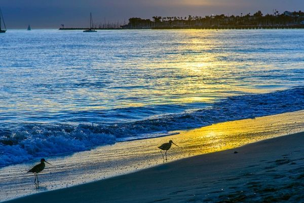 "Check out East Beach in Santa Barbara County, one of the ""Top 10 Beach of 2015"" in the U.S. #bestbeaches"
