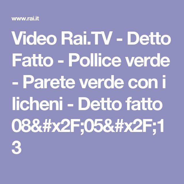 Video Rai.TV - Detto Fatto - Pollice verde - Parete verde con i licheni - Detto fatto 08/05/13