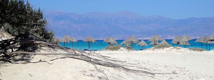 Chrissi eiland Kreta - excursie naar Golden Beach op Chrissi
