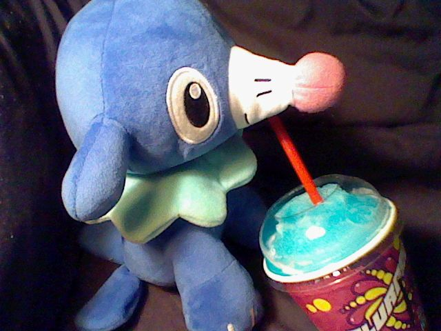 Slurpee,my Popplio, enjoying his namesake on 7-11 day (Free Slurpee day!). ::Slurp::
