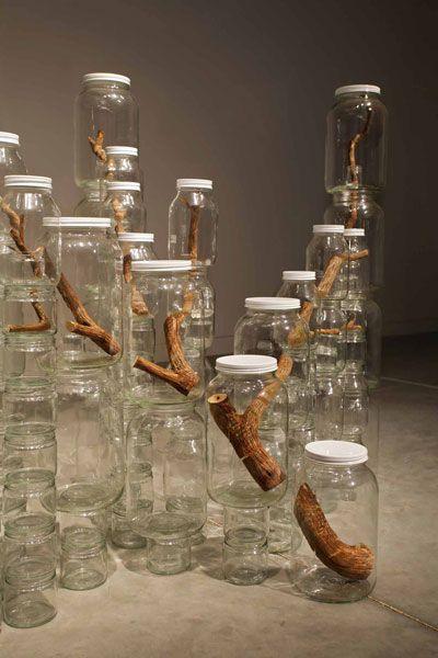 Urban Nature par Naoko Ito, 2009 Jeu d'assemblage, et de continuité de la branche à travers les différents bocaux.