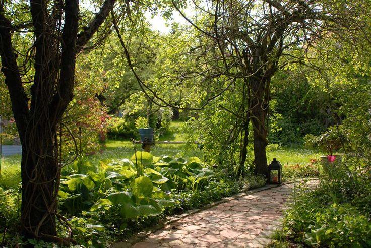 en güzel bahçe yolları 4