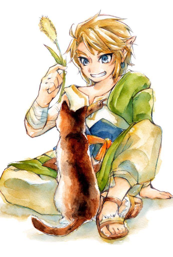 Link with cat <3 (Legend of Zelda Twilight Princess)