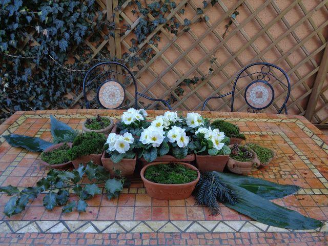 Spring outdoor centerpiece https://lefotodiluisella.blogspot.it/2017/03/centrotavola-primule-e-muschio.html