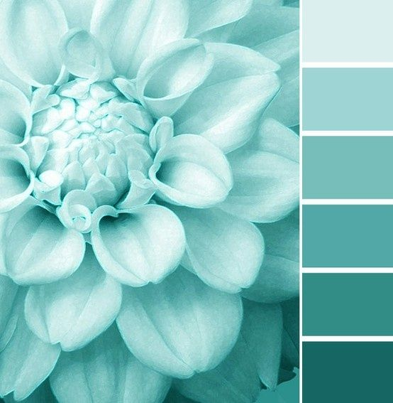 Color Schemes Tiffany Blue