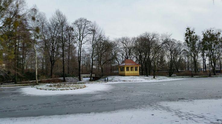 Senftenberg Schlosspark im Winter