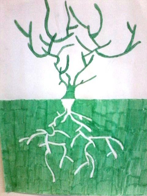 Drvo - zrcalni odraz - 3.r.
