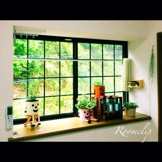 (408!)L.さんの、部屋全体,植物,水槽,窓際,出窓,シュガーバイン,高校生の部屋,アイビー,エアープランツ,ブリキマン,シマトネリコ,ウォーターマッシュルーム,My Best RoomClip,室内,のお部屋写真